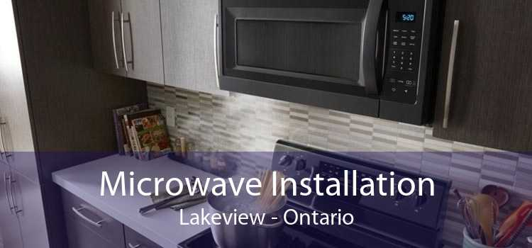 Microwave Installation Lakeview - Ontario